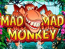 игра - Mad Mad Monkey